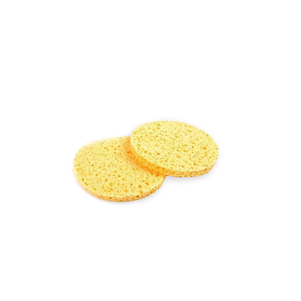 Hive_Sponges_2
