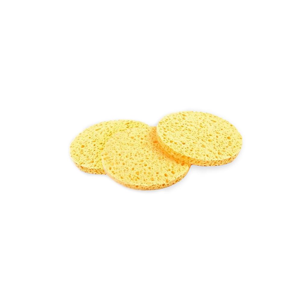 Hive_Sponges_3
